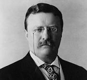 theodore roosevelt, theodore roosevelt picture, theodore roosevelt quotes, teddy roosevelt quotes, roosevelt quotes, theodore roosevelt quotations, roosevelt, roosevelt picture, famous quotes,